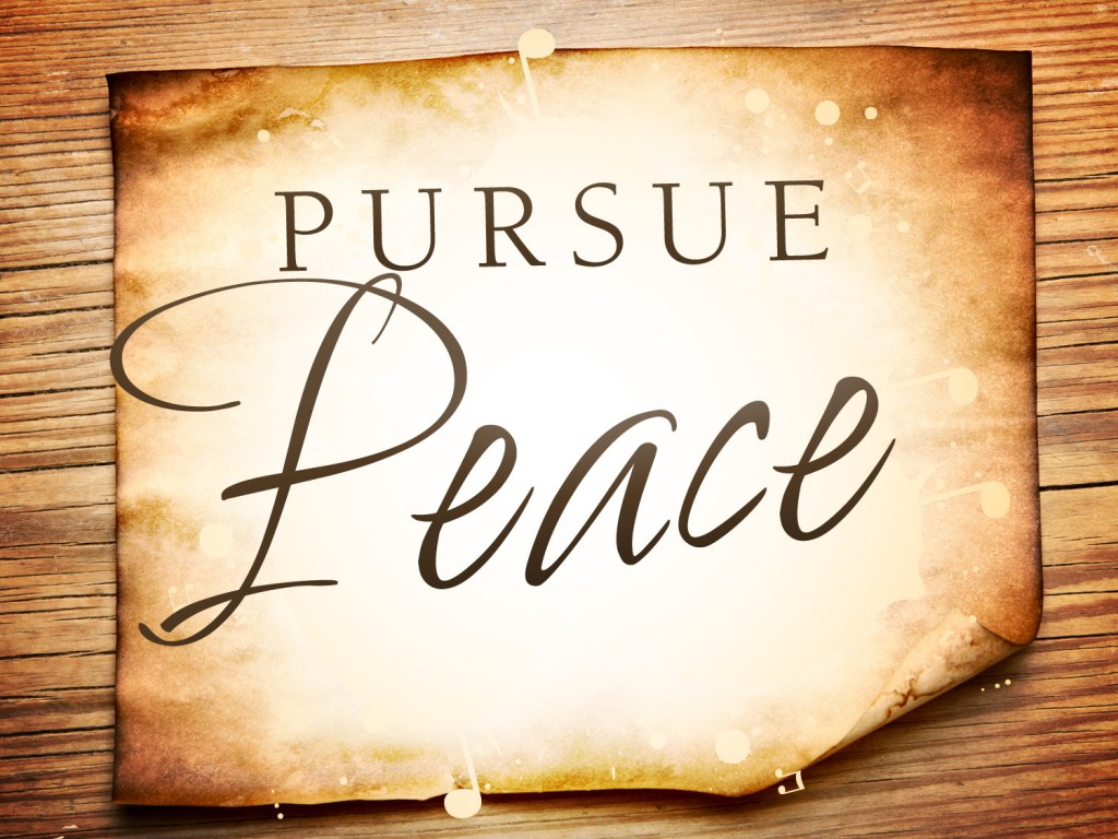 pursue peace_t_nv